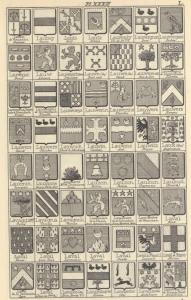 pagina uit de later gemaakte wapenboeken met afbeeldingen bij 'De Rietstap'